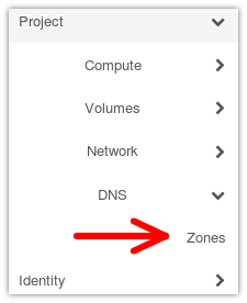 Accessing DNS zones menu item